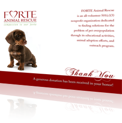 FORTE Animal Rescue Thank You Card