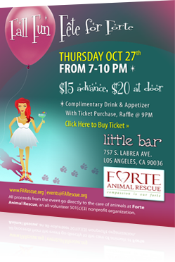 FORTE Animal Rescue Event Flyer Design